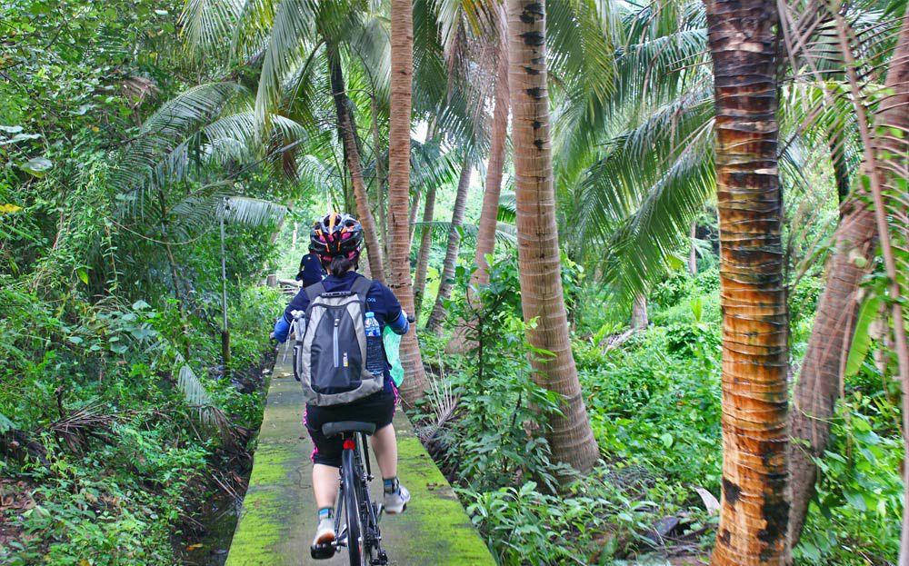 Tour xe đạp Jungle Bicycle - Ảnh 3