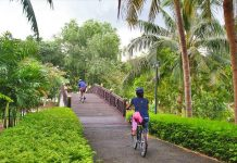 Tour xe đạp Jungle Bicycle - Ảnh 6