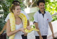 Trại rắn Bangkok - Bangkok Snake Farm