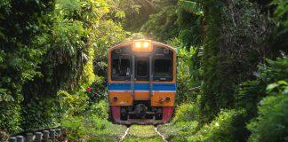 Xe lửa ở Thái Lan đang di chuyển qua rừng cây rậm rạp